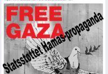 """Mellemfolkeligt Samvirkes """"Free Gaza"""" grafik - påført sandheden"""