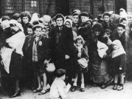 Kunne deres skæbne være blevet anderledes, hvis Israel var blevet oprettet før krigen? Efter krigen var der ingen lande i Europa, som ville have de få overlevende.