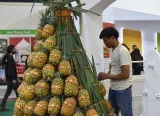 Ananas-udstillingen ved Agritech 9. maj 2018