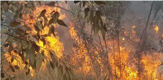 A fire near Kibbutz Be'eri, May 23, 2018.