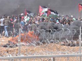 Opstandene langs Gaza-grænsen er blevet mere ekstreme og voldelige. (Foto: IDF Talsmand)